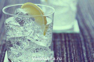 Как правильно пить джин: Джин-тоник